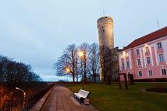 Mañana en la torre larga de Herman en Tallinn Imagenes de archivo