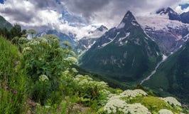 Mañana en las montañas Imagen de archivo libre de regalías