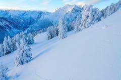 Mañana en las montañas nevosas Foto de archivo libre de regalías