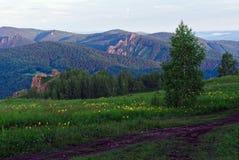 Mañana en montañas Fotografía de archivo