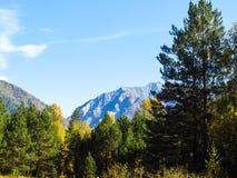 Mañana en montañas Fotos de archivo libres de regalías