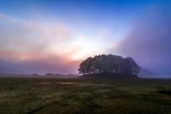 Mañana en niebla Foto de archivo