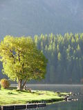 Mañana en St. Moritz del lago Foto de archivo libre de regalías