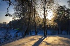 Mañana escarchada del invierno en la costa del río siberiano Imagen de archivo