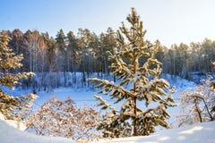 Mañana escarchada del invierno en la costa del río siberiano Foto de archivo