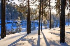 Mañana escarchada del invierno en la costa del río siberiano Imagenes de archivo