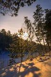 Mañana escarchada del invierno en la costa del río siberiano Foto de archivo libre de regalías