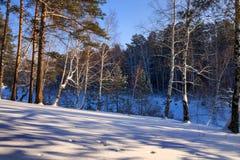 Mañana escarchada del invierno en la costa del río siberiano Imágenes de archivo libres de regalías
