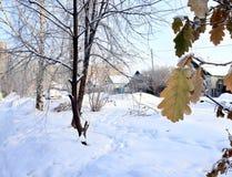 Mañana escarchada del paisaje del invierno en el pueblo Foto de archivo