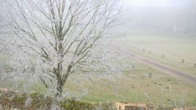 Mañana escarchada en campo francés rural Imagenes de archivo