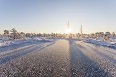 Mañana escarchada en el paisaje del bosque con las plantas, los árboles y el agua congelados imagen de archivo
