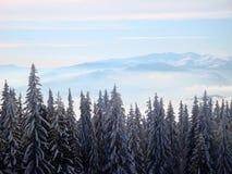 Mañana escarchada soleada en las montañas del invierno imagenes de archivo