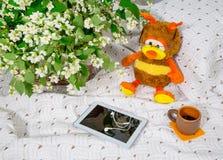Mañana Flores y juguetes del jazmín Foto de archivo