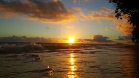 Mañana hermosa Foto de archivo libre de regalías
