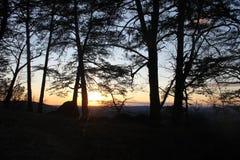 Mañana hermosa de la salida del sol a relajarse Foto de archivo