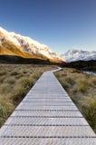 Mañana hermosa y serena en el cocinero National Park del Mt Fotos de archivo