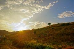 Mañana Landscpae Imagenes de archivo