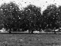 Mañana lluviosa Imagen de archivo