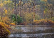 Mañana lluviosa del otoño en Netherland imagenes de archivo
