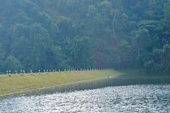Mañana pacífica y brumosa en parque nacional de la reserva de agua adentro ni Fotografía de archivo libre de regalías