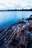Mañana reservada por el lago del bosque Imágenes de archivo libres de regalías