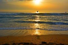 Mañana sobre el mar imagen de archivo