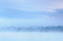 Mañana sobre un banco azul brumoso de un río salvaje fotos de archivo
