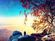 Mañana soleada con la primera nieve Fotógrafo que prepara la cámara en el trípode Rocas Nevado, en hojas coloridas del bramido de Imagen de archivo