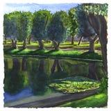 Mañana soleada en el parque 2 Imágenes de archivo libres de regalías