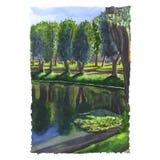 Mañana soleada en el parque Fotografía de archivo