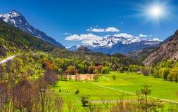 Mañana soleada en prados alpinos Imagenes de archivo