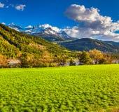Mañana soleada en prados alpinos Fotografía de archivo