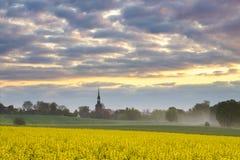 Mañana soleada hermosa de la primavera en un campo Imagen de archivo libre de regalías