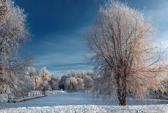 Mañana soleada hermosa en parque de la ciudad Fotografía de archivo libre de regalías