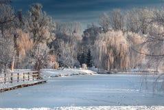 Mañana soleada hermosa en parque de la ciudad Foto de archivo libre de regalías