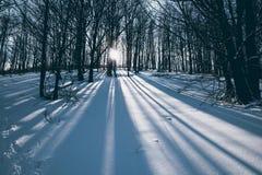 Mañana Sun Imagen de archivo libre de regalías