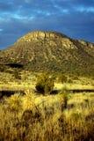 Mañana Sun en la montaña del desierto Fotos de archivo libres de regalías