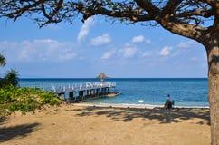 Mañana tropical de la playa Foto de archivo libre de regalías