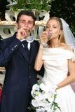 małżeństwo. Fotografia Royalty Free