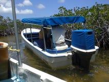 Mała łódka objeżdża mangrowe Tucacas w Wenezuela morzu karaibskim zdjęcia stock