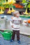 Mała śliczna dzieciak chłopiec z dużym kolorem żółtym kwitnie na żniwo festiwalu, Zdjęcia Royalty Free