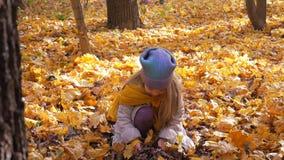 Mała śliczna dziewczyna rzuca w górę liści przy parkiem w jesieni i drzewach zbiory wideo