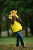 Mała śmieszna chłopiec w jesień liści portrecie Zdjęcie Royalty Free