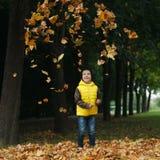 Mała śmieszna chłopiec w jesień liści portrecie Fotografia Royalty Free