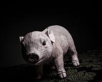 Mała świni zabawka Zdjęcia Royalty Free