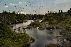 Mała Żołnierz jeziora panorama zdjęcie royalty free