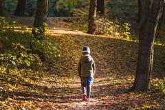 Mała berbeć chłopiec chodzi samotnie przez jesieni lasowej ścieżki w życiu Znęcać się w szkolnym pojęciu Strach i czupiradło plec zdjęcia stock