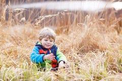 Mała berbeć chłopiec ma zabawę blisko lasowego jeziora, natura Zdjęcia Royalty Free