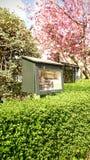 Mała bezpłatna biblioteka Zdjęcie Stock