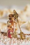 Mała butelka folująca z kolorowymi wysuszonymi kwiatami Fotografia Royalty Free